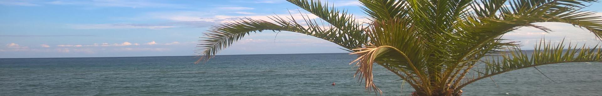 Morze 1920x308